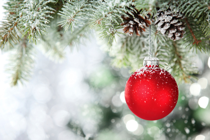 Image result for holiday decor